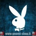 Playboy (l100)